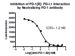 Anti-PD-1 Neutralizing Antibody